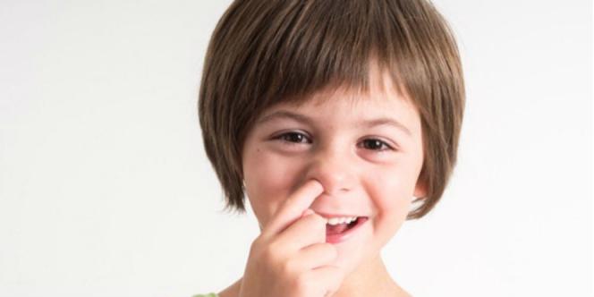 Manfaat Kesehatan Hidung Dan Cara Menjaganya